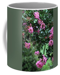 Coffee Mug featuring the photograph Pink Crape Myrtle Tree by Trina Ansel