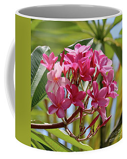 Pink Plumeria Square Coffee Mug