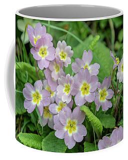 Pink Primroses In Devon Coffee Mug