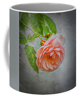 Designs Similar to Pink Rose #i0 by Leif Sohlman