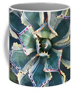 Pinwheel Succulent Coffee Mug