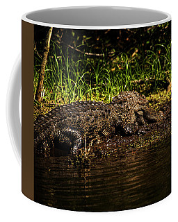 Playing In The Mud Coffee Mug