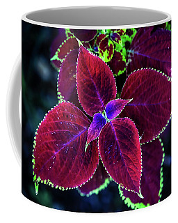 Plum Tones Coffee Mug