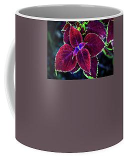 The Unveiling Coffee Mug