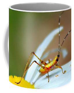Pollen Tracks Coffee Mug