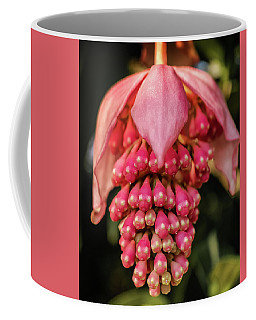 Pomegranate Flower Coffee Mug