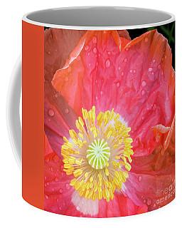 Poppy Closeup Coffee Mug