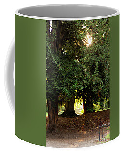 Coffee Mug featuring the photograph Portal To Another World by Scott Lyons