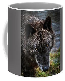 Portrait Niko Coffee Mug