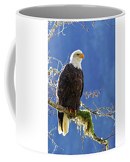 Portrait Of A Backlit Bald Eagle In Squamish Coffee Mug