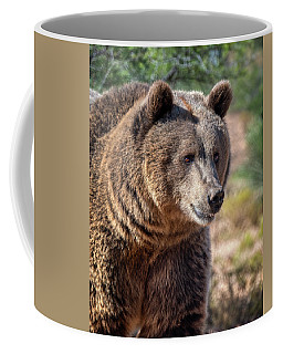 Portrait Of A Female Grizzly Bear Coffee Mug