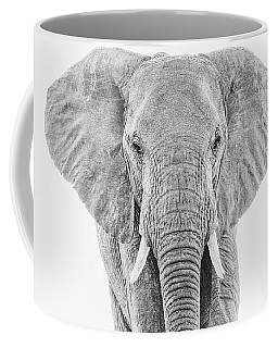 Portrait Of An African Elephant Bull In Monochrome Coffee Mug
