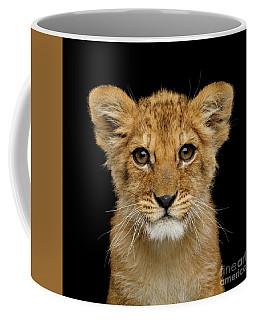 Coffee Mug featuring the photograph Portrait Of Little Lion by Sergey Taran