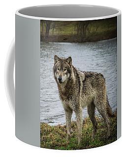 Posing By The Water Coffee Mug