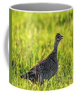 Prairie Chicken Hen Coffee Mug