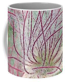 Coffee Mug featuring the photograph Prairie Smoke by Ann E Robson