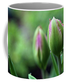 Coffee Mug featuring the photograph Pray For Rain by Michelle Wermuth