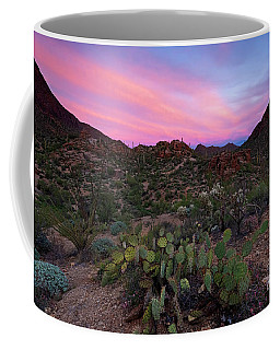 Prickly Pear Sunset Coffee Mug