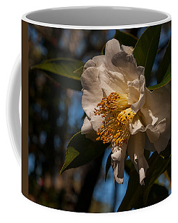 Prom Queen  Coffee Mug