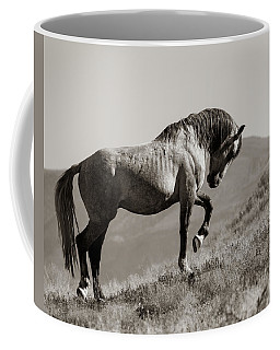 Coffee Mug featuring the photograph Proud by Mary Hone