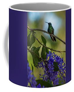 Purple Blossoms And Hummingbird Coffee Mug
