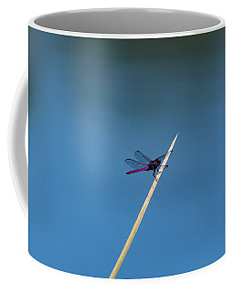 Purple Dragonfly Coffee Mug