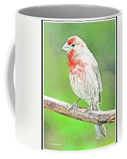 Purple Finch, Animal Portrait Coffee Mug