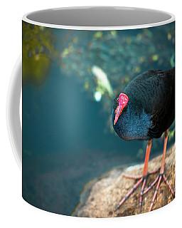 Purple Swamphenn Coffee Mug
