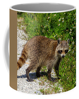 Raccoon Coffee Mug
