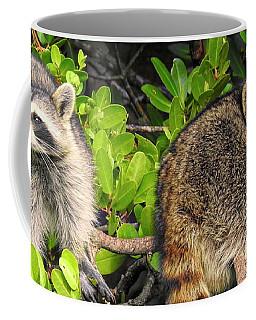 Raccoons In The Mangroves Coffee Mug