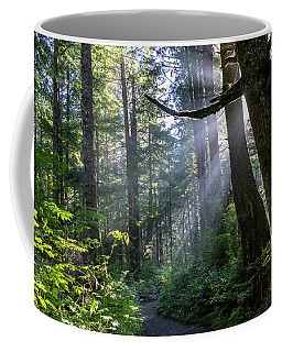 Coffee Mug featuring the photograph Rain Forest At La Push by Ed Clark
