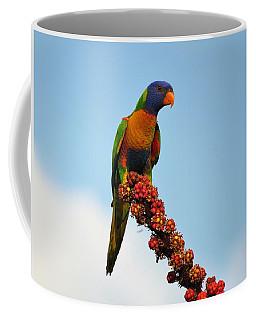 Rainbow Lorikeet Umbrella Tree Flowers Coffee Mug