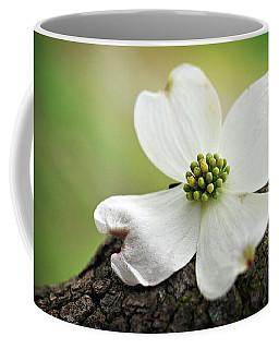 Raining Sunshine Coffee Mug