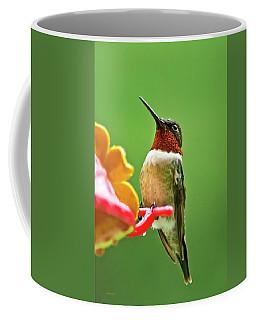 Rainy Day Hummingbird Coffee Mug