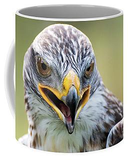 Raptor Power Coffee Mug