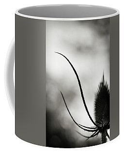 Coffee Mug featuring the photograph Reach Up by Michelle Wermuth