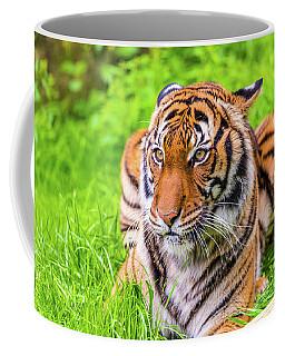 Ready To Pounce Coffee Mug