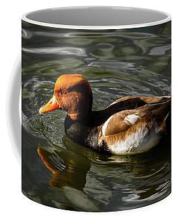 Red Crested Pochard Duck Coffee Mug