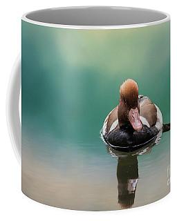 Red-crested Pochard Swimming Coffee Mug