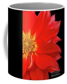 Red Dahlia On Black Background Coffee Mug