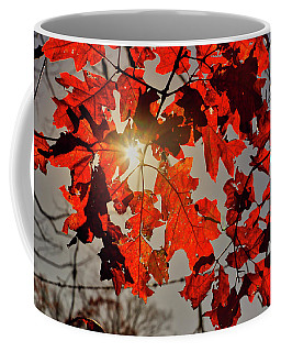 Coffee Mug featuring the photograph Red Fall Leaves by Meta Gatschenberger