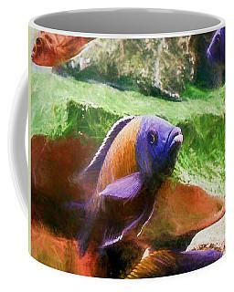 Red Fin Borleyi Cichlid Rising Coffee Mug