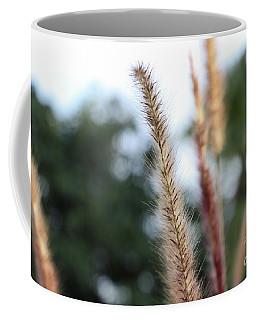 Red Grass - Pennisetum Setaceum 'rubrum' Coffee Mug