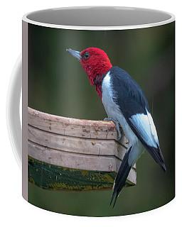 Red-headed Woodpecker Perched Coffee Mug