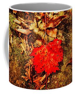 Red Leaf On Mossy Rock Coffee Mug