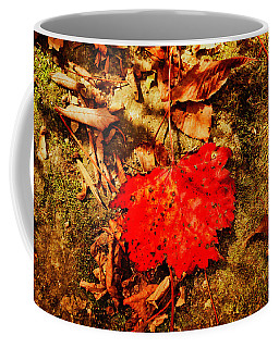 Coffee Mug featuring the photograph Red Leaf On Mossy Rock by Meta Gatschenberger