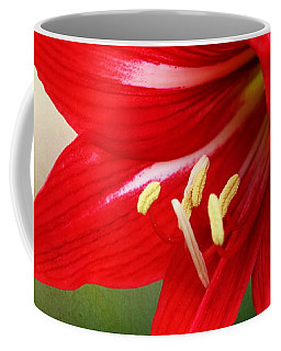 Coffee Mug featuring the photograph Red Lily Flower by Debi Dalio