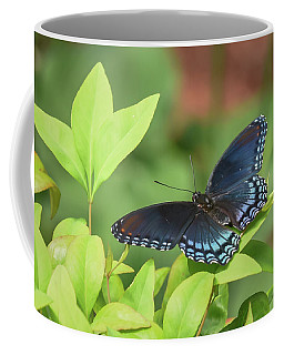 Red Spotted Purple Butterfly Coffee Mug