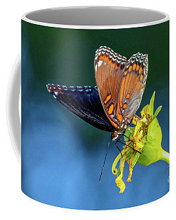 Red-spotted Purple Butterfly Coffee Mug