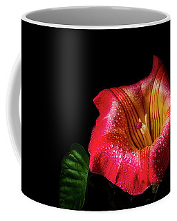 Red Trumpet Vine Coffee Mug